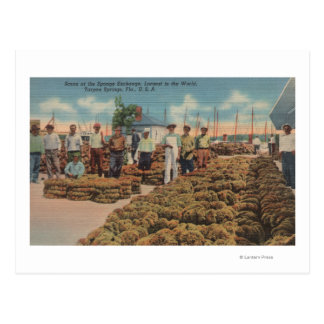 Tarpon Springs, FL - Scene of Sponge Exchange Postcard