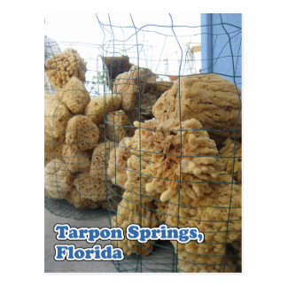 Tarpon Springs Sponges Postcard