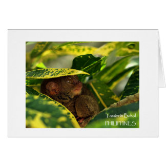 Tarsier in Bohol Note Card