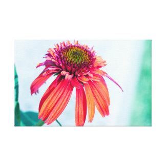 Tart Flower Canvas