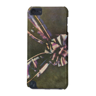 Tartan Ribbon First Known Color Photograph iPod Touch 5G Cases