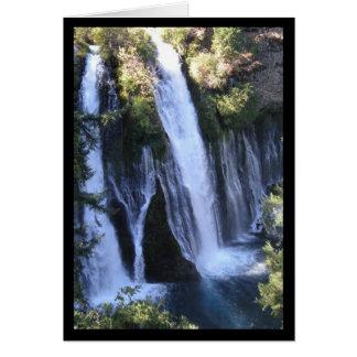 Tarzan's Waterfall- Song of Sol. 2:3 Greeting Card