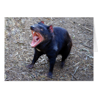 Tasmanian Devil Displaying His Vicious Yawn Card