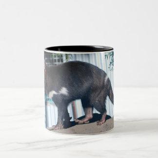 Tasmanian Devil Two-Tone Coffee Mug