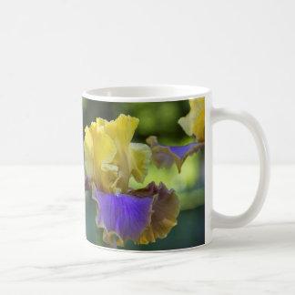 Tasse d'iris pourpre et jaune