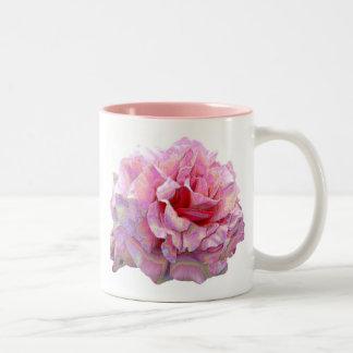 Tasse rose de jardin anglais assez rose de pays