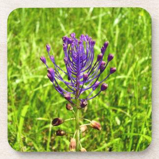 Tassel-Hyacinth Hard Plastic Coasters