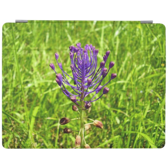 Tassel-Hyacinth iPad Cover