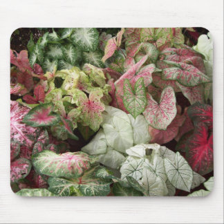 Taste of the Tropics Mouse Pad