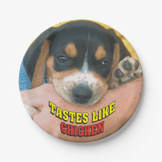 Tastes Like Chicken Beagle Puppy 7 Inch Paper Plate