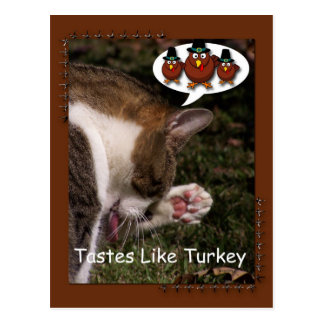 Tastes Like Turkey Postcard