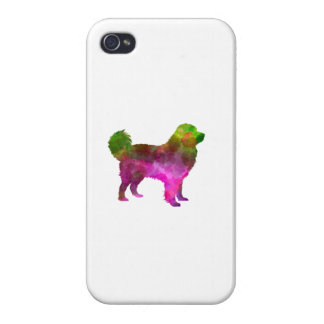 Tatra Shepherd Dog in watercolor Cases For iPhone 4