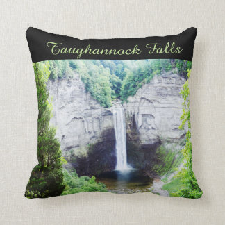 TAUGHANNOCK FALLS pillow