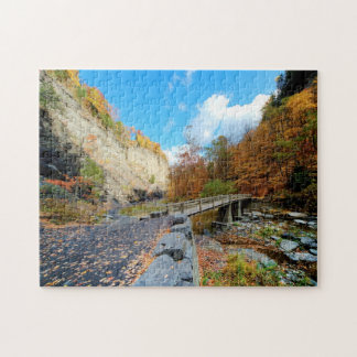 Taughannock Falls State Park Puzzle