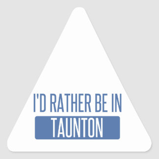 Taunton Triangle Sticker