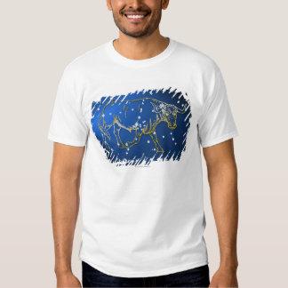 Taurus 2 t-shirts