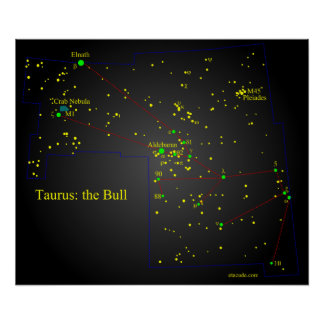 Taurus the Bull constellation Poster