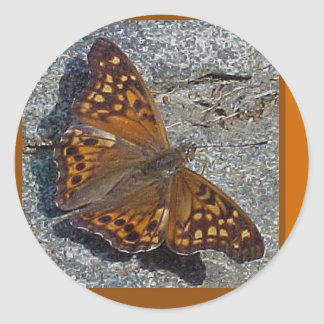 Tawny Emperor Butterfly Sticker