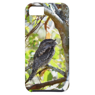 TAWNY FOGMOUTH RURAL QUEENSLAND AUSTRALIA iPhone 5 COVER