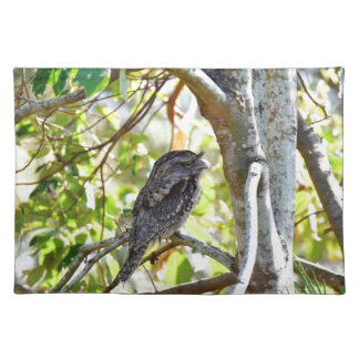TAWNY FOGMOUTH RURAL QUEENSLAND AUSTRALIA PLACEMAT
