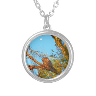 TAWNY FROGMOUTH ART QUEENSLAND AUSTRALIA SILVER PLATED NECKLACE