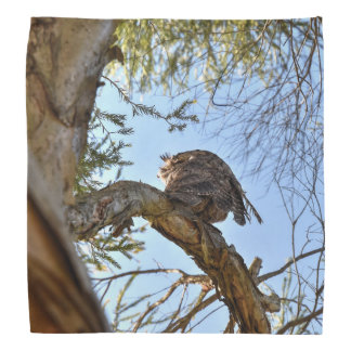 TAWNY FROGMOUTH OWL QUEENSLAND AUSTRALIA BANDANA