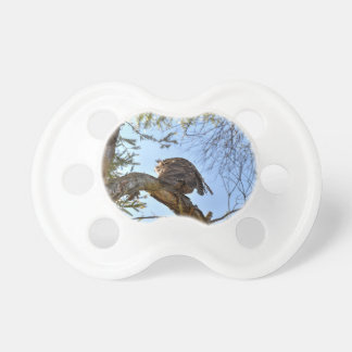 TAWNY FROGMOUTH OWL RURAL QUEENSLAND AUSTRALIA BABY PACIFIERS