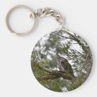 TAWNY FROGMOUTH OWL RURAL QUEENSLAND AUSTRALIA BASIC ROUND BUTTON KEYCHAIN