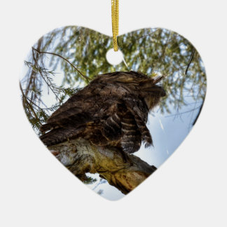 TAWNY FROGMOUTH OWL RURAL QUEENSLAND AUSTRALIA CERAMIC HEART ORNAMENT