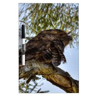 TAWNY FROGMOUTH OWL RURAL QUEENSLAND AUSTRALIA DRY ERASE BOARD