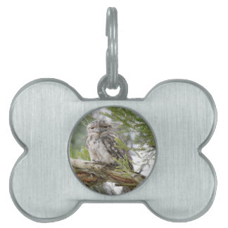 TAWNY FROGMOUTH OWL RURAL QUEENSLAND AUSTRALIA PET ID TAG