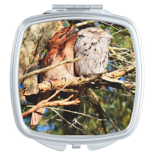 TAWNY FROGMOUTH OWLS RURAL QUEENSLAND AUSTRALIA COMPACT MIRRORS