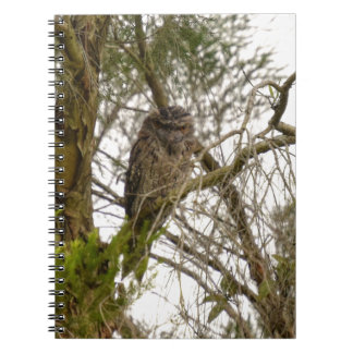 TAWNY FROGMOUTH QUEENSLAND AUSTRALIA NOTEBOOK