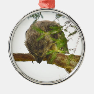 TAWNY FROGMOUTH QUEENSLAND AUSTRALIA Silver-Colored ROUND ORNAMENT