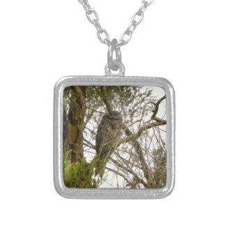 TAWNY FROGMOUTH QUEENSLAND AUSTRALIA SILVER PLATED NECKLACE