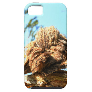 TAWNY FROGMOUTH RURAL QUEENSLAND AUSTRALIA CASE FOR THE iPhone 5