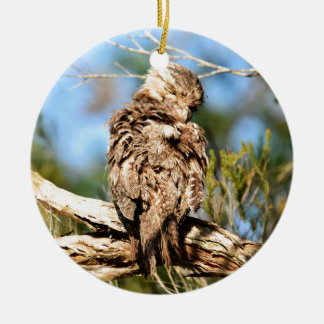TAWNY FROGMOUTH RURAL QUEENSLAND AUSTRALIA CERAMIC ORNAMENT