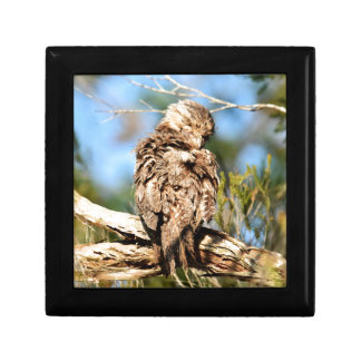 TAWNY FROGMOUTH RURAL QUEENSLAND AUSTRALIA GIFT BOX