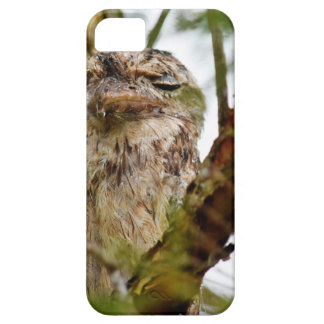 TAWNY FROGMOUTH RURAL QUEENSLAND AUSTRALIA iPhone 5 CASE