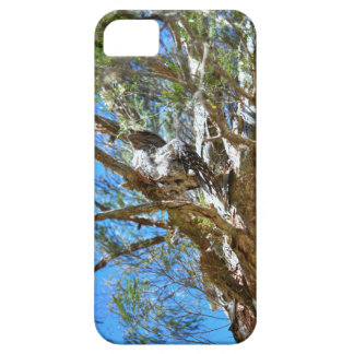 TAWNY FROGMOUTH RURAL QUEENSLAND AUSTRALIA iPhone 5 COVER