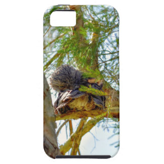 TAWNY FROGMOUTH RURAL QUEENSLAND AUSTRALIA iPhone 5 COVERS