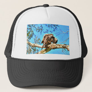 TAWNY FROGMOUTH RURAL QUEENSLAND AUSTRALIA TRUCKER HAT