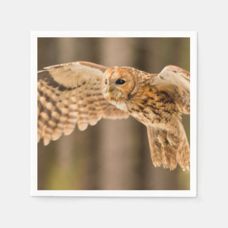 Tawny Owl in flight. Disposable Napkins