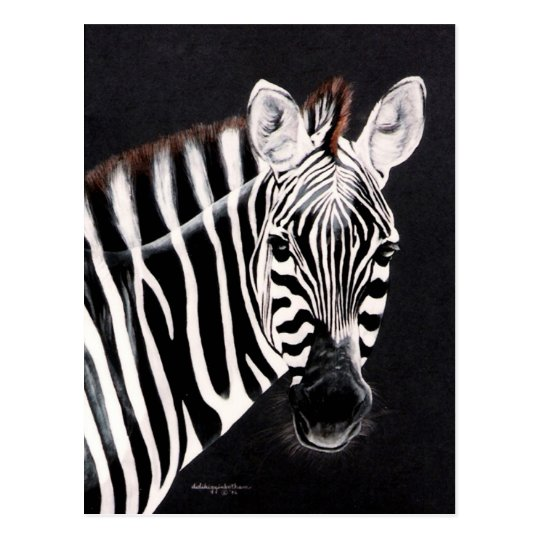 Taylor's other Zebra by DiDi Postcard