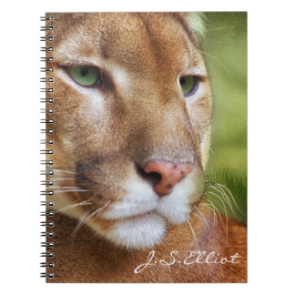 TCWC - Puma Mountain Lion Art Notebook