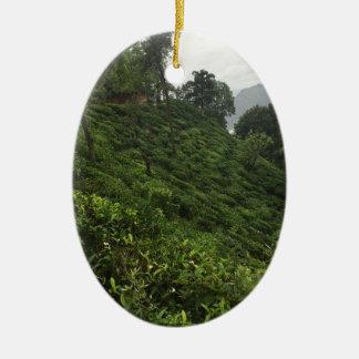 Tea Plantation Ceramic Ornament