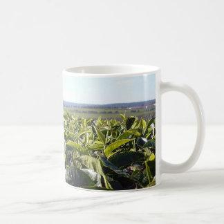 Tea plantation coffee mug