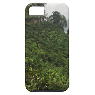 Tea Plantation iPhone 5 Cases