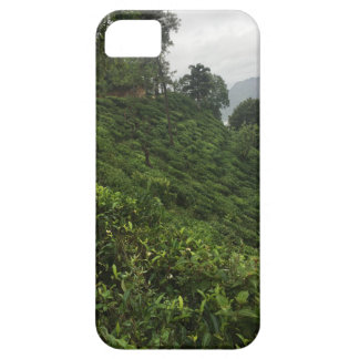 Tea Plantation iPhone 5 Covers