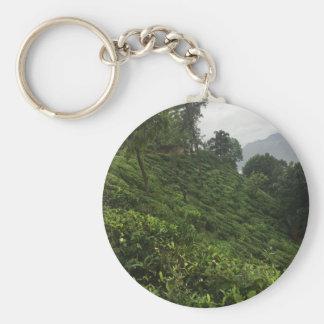 Tea Plantation Keychain
